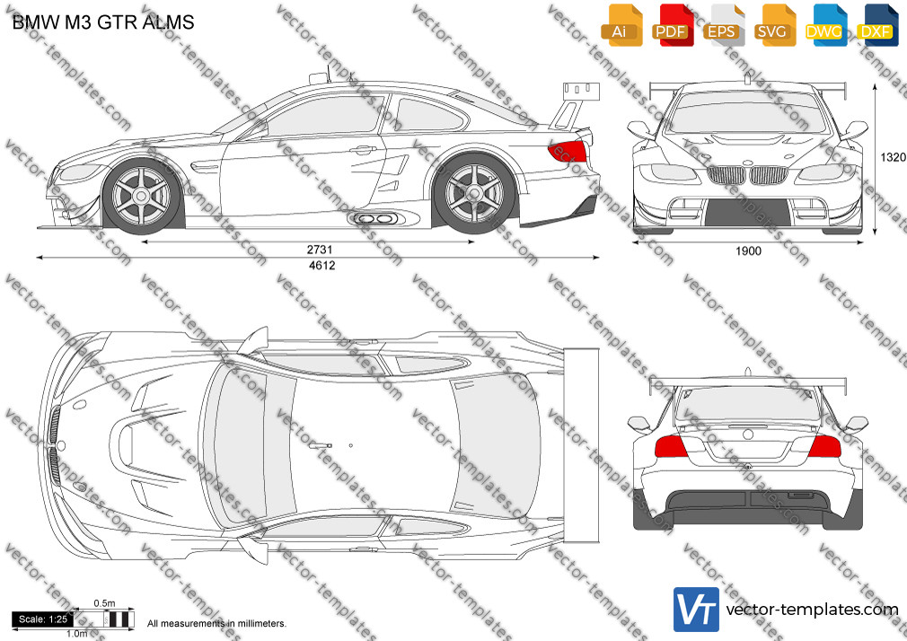 BMW M3 GTR ALMS 2009