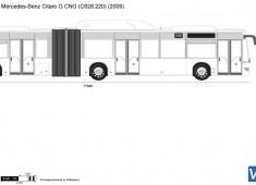 Mercedes-Benz Citaro G CNG (C628.220)