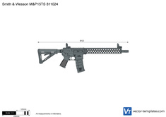 Smith & Wesson M&P15TS 811024