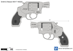 Smith & Wesson M317 160222