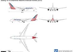 Boeing 787-8 Dreamliner N800AN American Airlines
