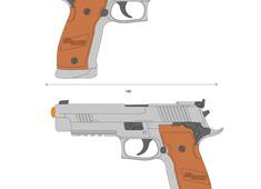 Sig Sauer P226 X5